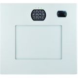 Cannon Security Products Wall Vault WV-W-01